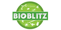 Pukaha BioBlitz Logo 200px